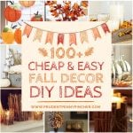 100 Cheap and Easy DIY Fall Decor Ideas
