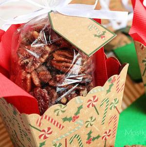 Crockpot Roasted Sugared Pecans