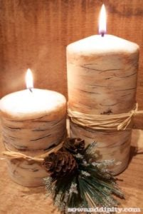 faux-birch-candles-2_new