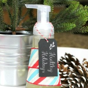 homemade-foaming-hand-soap-crafts-go-green-how-to-1