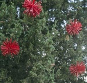 300 Count Led Christmas Lights
