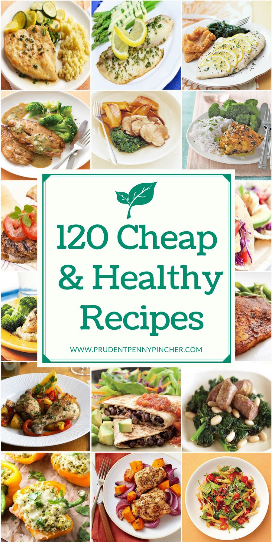 120 Cheap and Healthy Recipes
