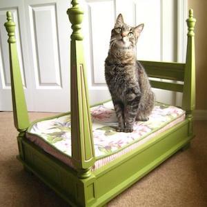 diy four poster cat bed old table    scrap wood trim   finials   wood blocks   foam fabric 100 cheap  u0026 easy diy pet projects   prudent penny pincher  rh   prudentpennypincher