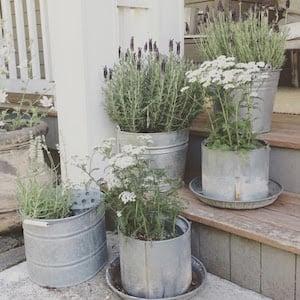 Farmhouse Porch Galvanized Bucket Planters