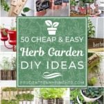 50 Cheap and Easy Herb Garden DIY Ideas