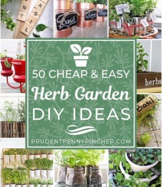 50 Cheap and Easy Herb Garden DIY Ideas