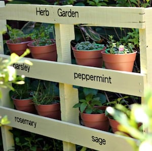 pallet herb garden pallet extra wood boards outdoor paint vinyl letters terra cotta pots
