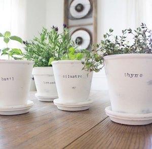 Wall Herb Garden Indoor Pallet