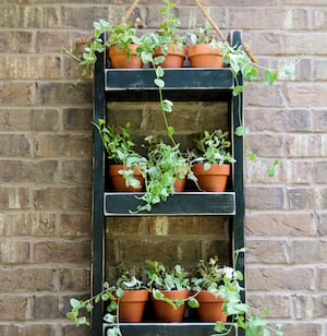 wood planter for the wall wood drill wood glue finish nails spray paint 2 3 of rope small clay pots hanging herb garden