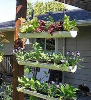 50 Cheap And Easy Diy Herb Garden Ideas Prudent Penny