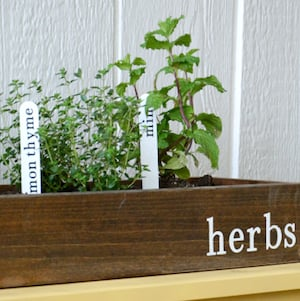 other diy herb garden ideas