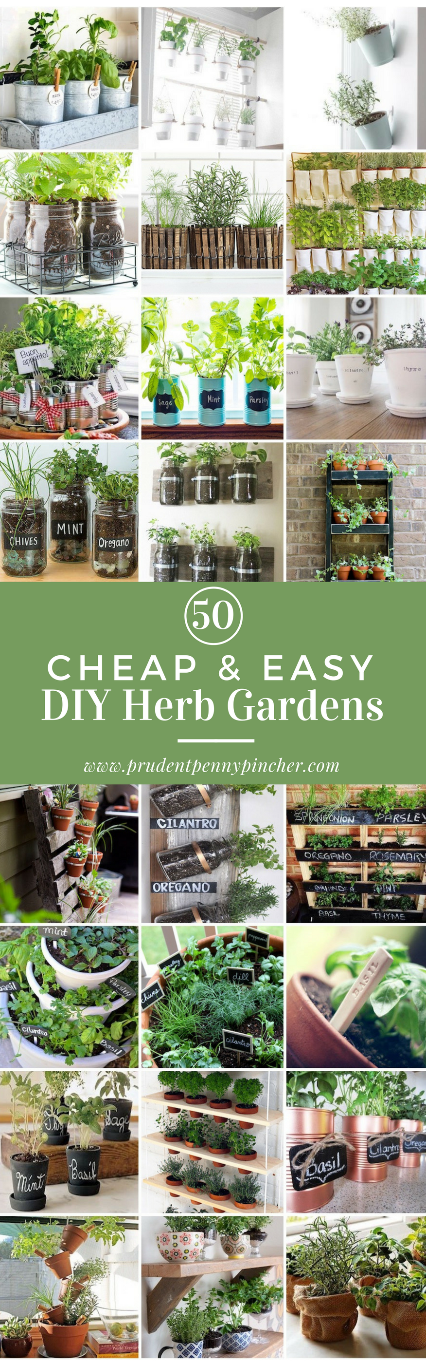 diy herb garden buying fresh herbs at the grocery store can get expensive you get a small amount for 2 4 and the quality usually isnt that great