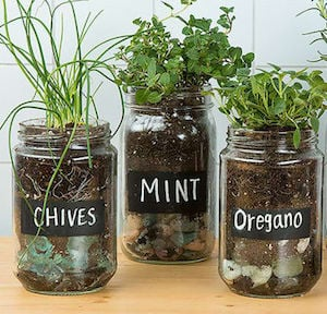 repurposed diy herb garden ideas herb garden with old glass jars black chalk paint chalk pebbles - Diy Herb Garden Ideas