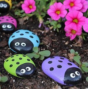 Ladybug Rocksin Garden