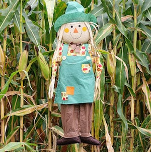 diy scarecrow in yard