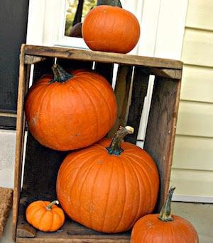 wood crate and pumpkins
