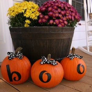 Boo Pumpkins and Mum