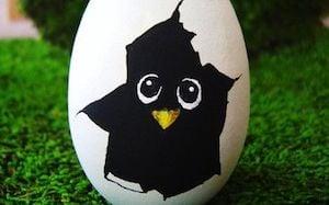 Hatching Chick Rock