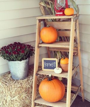 All You Need Is A Basic Ladder And Can Decorate It With Wver Fall Decor Items That Have