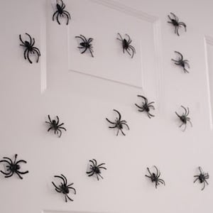 Magnetic Spiders for the front door