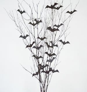 Bats on branches in a vase