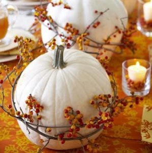 white pumpkins wrapped in Bittersweet berry vines