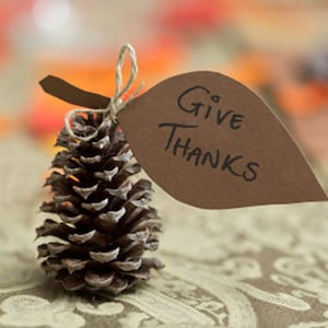 Thankful Pine Cones
