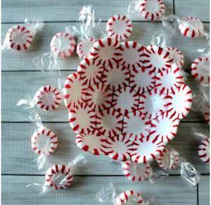Peppermint Bowl Christmas Craft