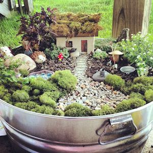 Diy Fairy Garden From Ai S Hideaway