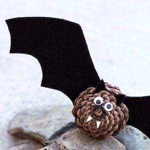 Pinecone Bat