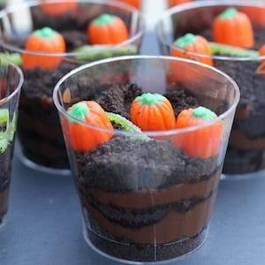 Pumpkin Patch Dirt Cups