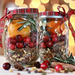 150 Best Christmas Gifts In A Jar Prudent Penny Pincher