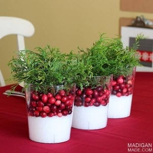 easy cranberry centerpiece from rosyscription