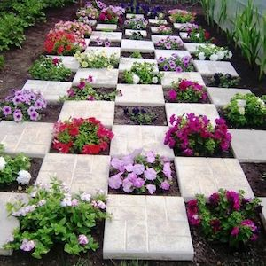 Checkered Flower and Paver Garden