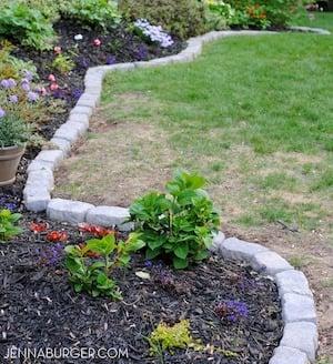 garden Bed bordered with bricks