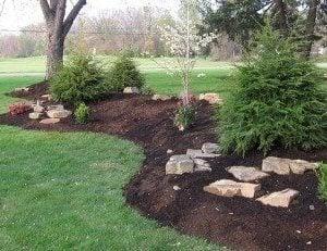 berm landscaping idea