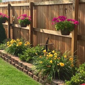 Flowers Along Fence