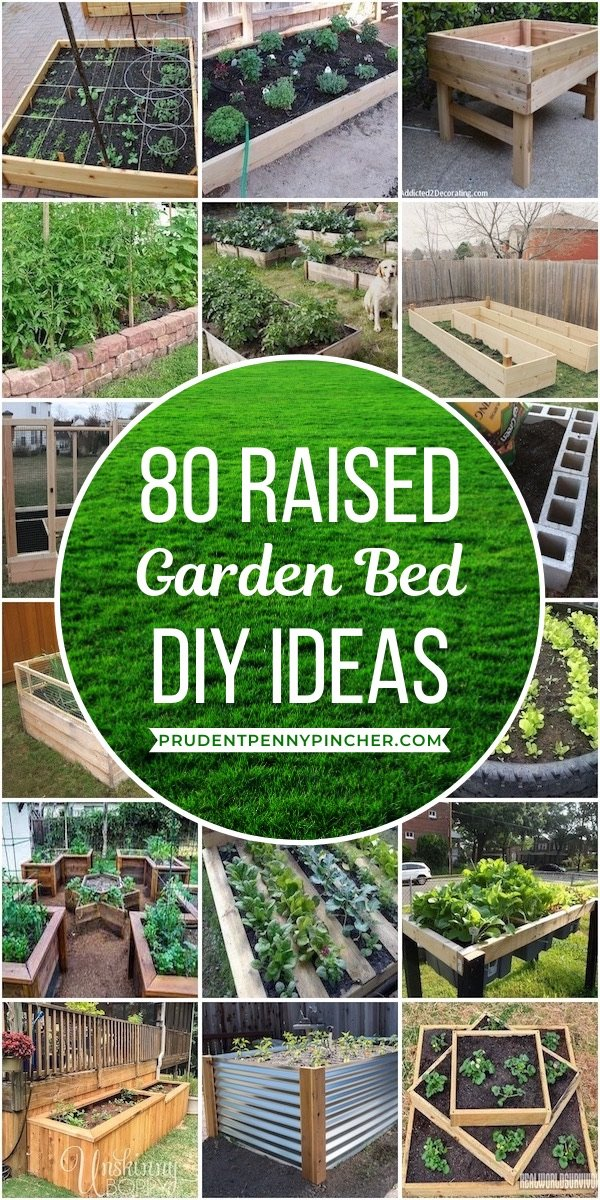 80 Best Diy Raised Garden Beds Prudent Penny Pincher