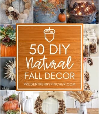 50 DIY Natural Fall Decor Ideas