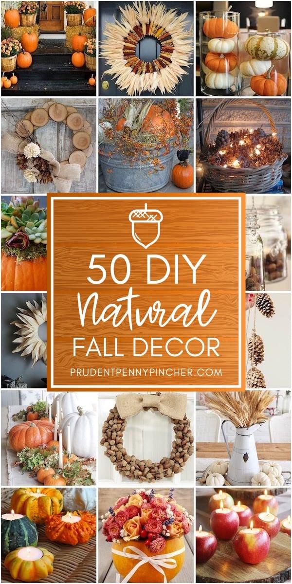 50 DIY Natural Fall Decor Ideas