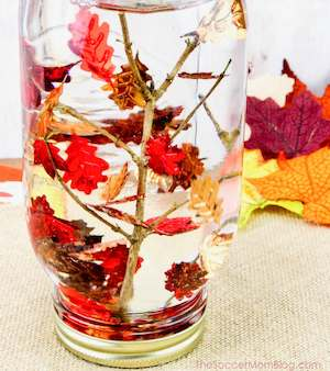 Falling Leaves Sensory Bottle