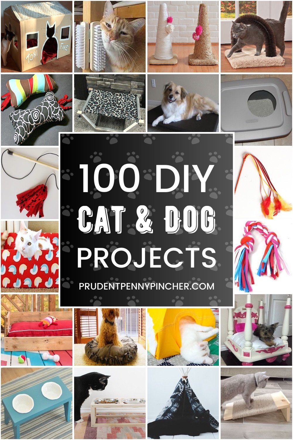 100 Cheap Easy Diy Pet Ideas Prudent Penny Pincher