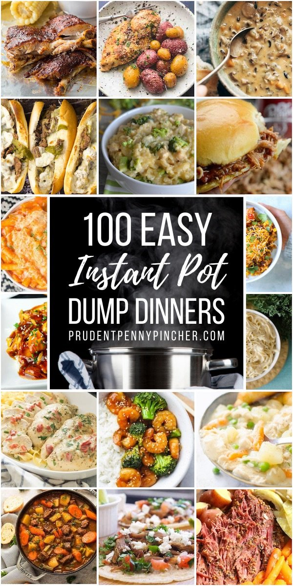 100 Dump And Go Instant Pot Dinner Recipes Prudent Penny Pincher
