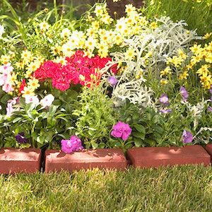 cheap Brick Edging with flowers