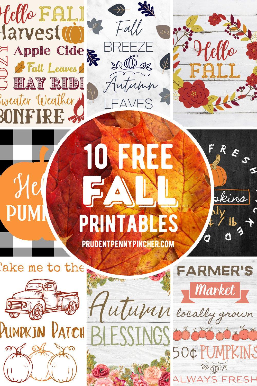 100 Free Fall Printables