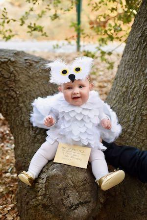 Baby Owl Costum