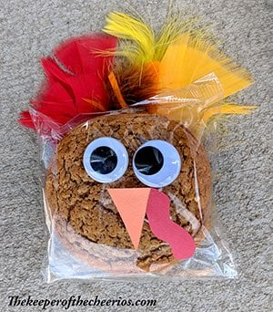 Turkey Packaged Oatmeal Cookie Craft