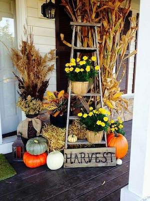 Harvest Front Door Display with mums, ladder, corn stalks and pumpkins