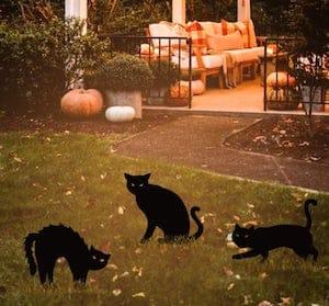 Black Cat Halloween Yard Signs
